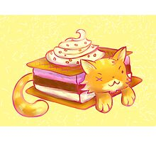 Ice Sandwich cat Photographic Print