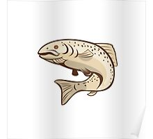 Rainbow Trout Jumping Cartoon Poster