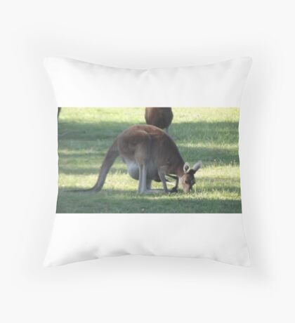 Australian Kangaroo Throw Pillow