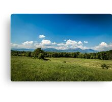 Fields of Italy in a spring day Canvas Print