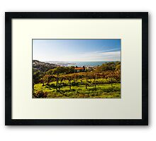 The gulf of trieste in a sunny day Framed Print