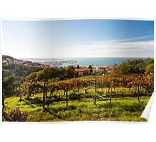 The gulf of trieste in a sunny day Poster