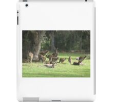 Group of Kangaroos iPad Case/Skin