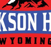 JACKSON HOLE WYOMING Mountain Skiing Ski Snowboard Snowboarding 3 Sticker