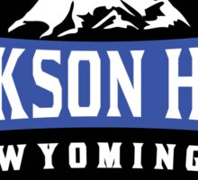 JACKSON HOLE WYOMING Mountain Skiing Ski Snowboard Snowboarding 4 Sticker