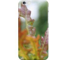 Orange Oak Leaves  iPhone Case/Skin