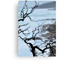 Zen Coastline Canvas Print