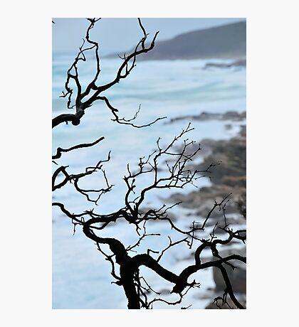 Zen Coastline Photographic Print