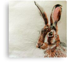 Daniel The Hare Canvas Print