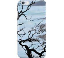 Zen Coastline iPhone Case/Skin