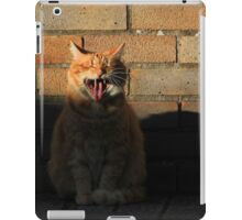Ginger cat and shadow iPad Case/Skin
