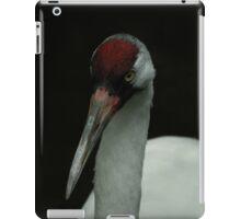 Sandhill crane iPad Case/Skin