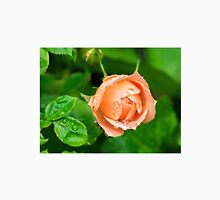 Peach Rose In The Rain Womens Fitted T-Shirt