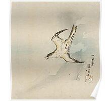 Utagawa Kuniyoshi - Hototogisu. Bird painting: cute fowl, fly, wings, lucky, pets, wild life, animal, birds, little small, bird, nature Poster