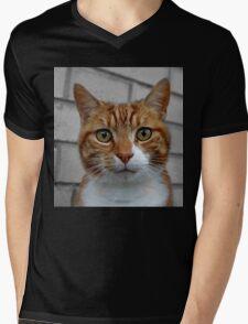 Fudge Mens V-Neck T-Shirt