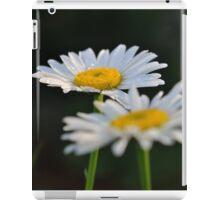 Bi-Polar iPad Case/Skin