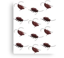 Roaches Canvas Print
