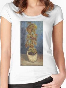 Vincent Van Gogh - Flame Nettle In A Flowerpot. Still life with flowers: blossom, nature, botanical, floral flora, wonderful flower, plants, cute plant for kitchen interior, garden, vase Women's Fitted Scoop T-Shirt