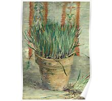 Vincent Van Gogh - Flowerpot With Garlic Chives. Still life with flowers: blossom, nature, botanical, floral flora, wonderful flower, plants, cute plant for kitchen interior, garden, vase Poster