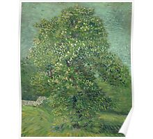 Vincent Van Gogh - Horse Chestnut Tree In Blossom. Forest view: forest , trees,  fauna, nature, birds, animals, flora, flowers, plants, field, weekend Poster