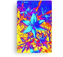 Blue Flame Lily Canvas Print