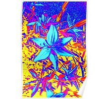 Blue Flame Lily Poster