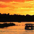 Zambezi river sunset cruise by Explorations Africa Dan MacKenzie