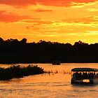 Zambezi river sunset cruise by Dan MacKenzie
