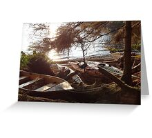 Kayaking in Canada Greeting Card