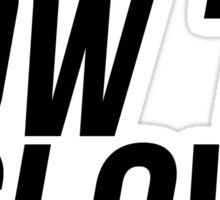 """Low """"N"""" Slow JDM Sticker Sticker"""