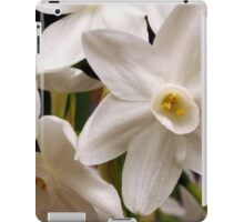 Narcissus:  Pining for Love iPad Case/Skin
