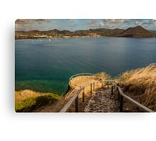 Tree & Pigeon island Canvas Print