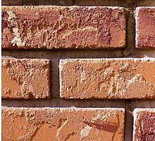 Brick Wall Close Up by kfisi