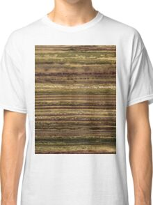 Brush #108 Classic T-Shirt