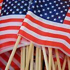 American Flags by WildestArt
