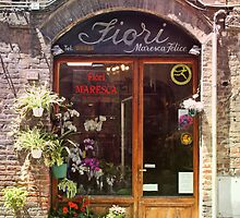 The Italian Flowershop by danni-milton
