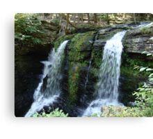 Beautiful waterfall in Pennsylvania Canvas Print