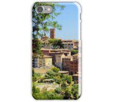 Under The Tuscan Sun iPhone Case/Skin