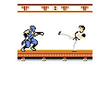 Ninjutsu vs. Kung Fu Photographic Print