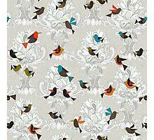 bird love trees Photographic Print