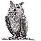 Owl by Elisa Camera