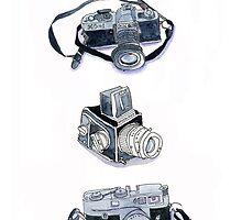 Vintage Cameras by kimzoph