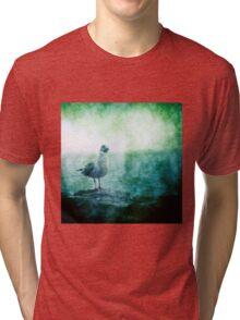 See the Seagull Tri-blend T-Shirt