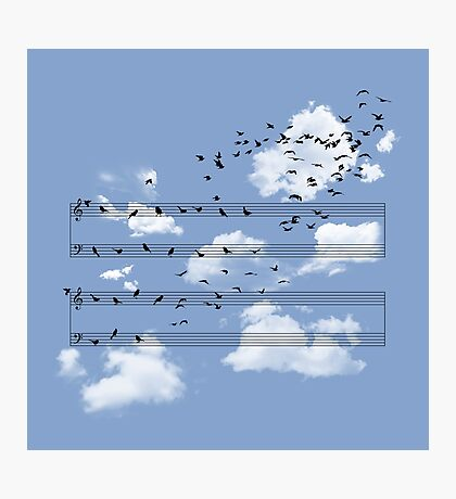 The Musical Notes Photographic Print