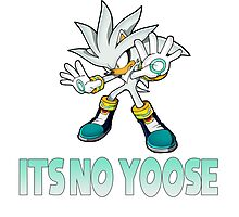 Silver The Hedgehog - It's no use  Photographic Print