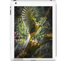 Aplomado Falcon iPad Case/Skin