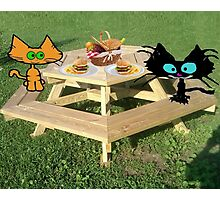 Cats Ready For A PicNic Photographic Print