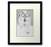 soft snowy day for wolf Framed Print
