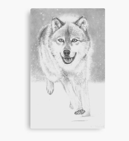 soft snowy day for wolf Canvas Print