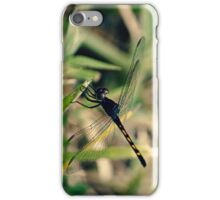 Dragonfly in Summer iPhone Case/Skin